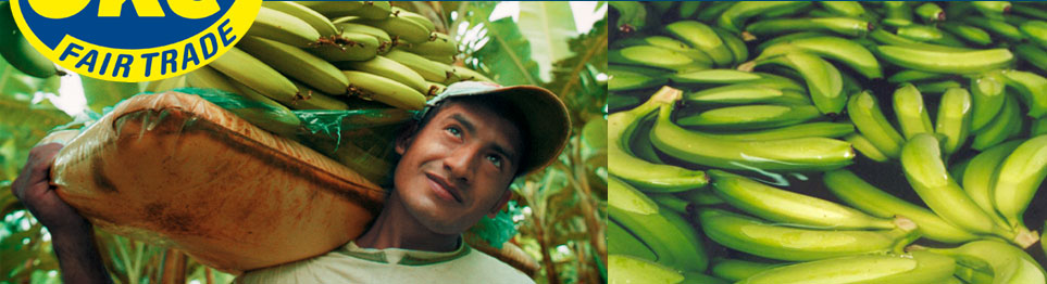 Oke USA - A Fair Trade banana company